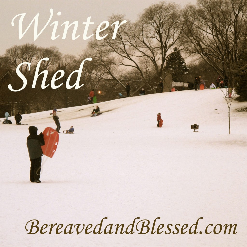 Winter Shed logo