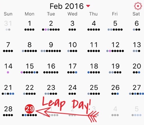 Leap Day Pic 2016